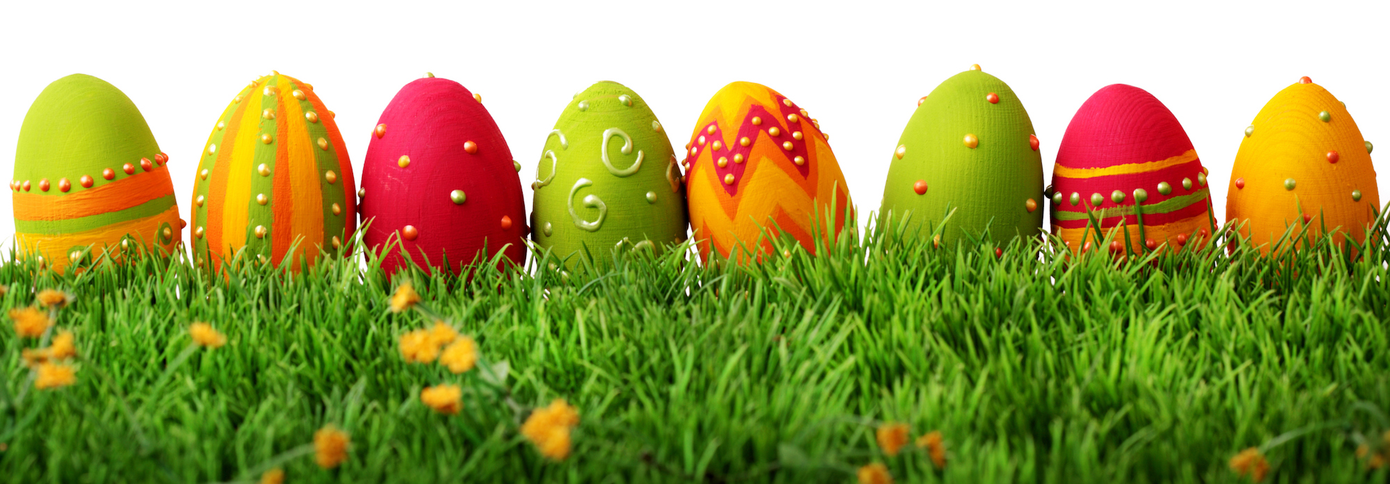 cookes storage easter opening hours